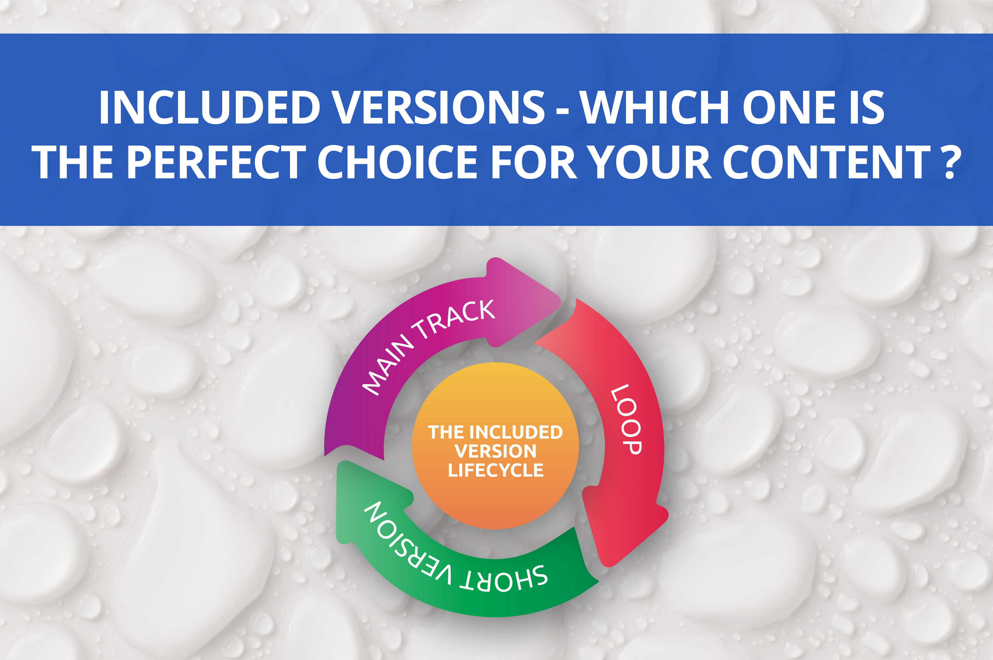Included Version Lifecycle - Which One is The Perfect Choice For Your Content?