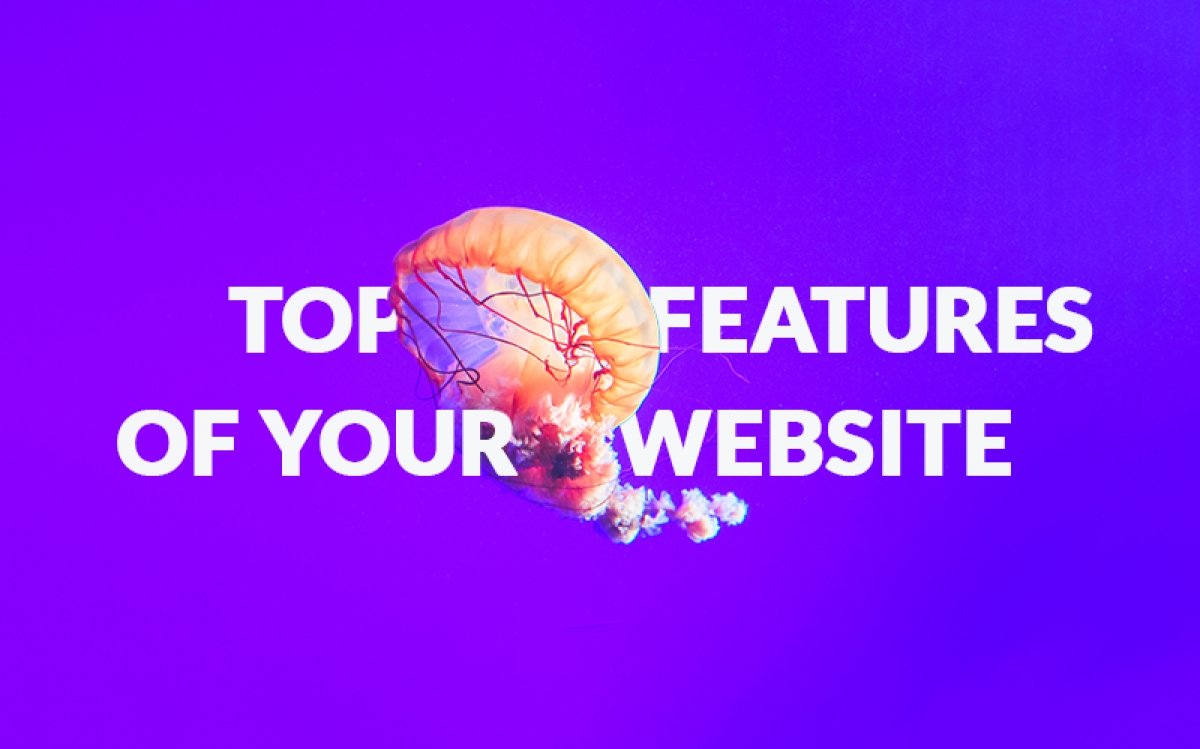 Top features of your small business website: Are you missing out on something?