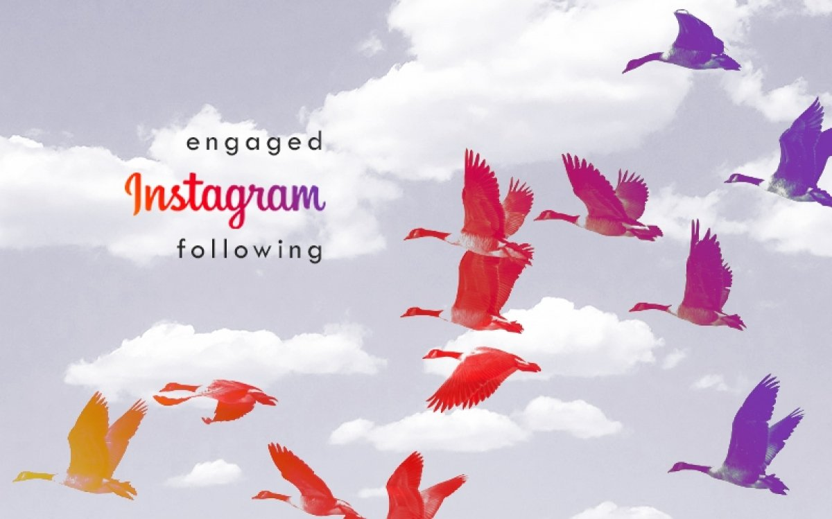Building an engaged Instagram following in 6 steps